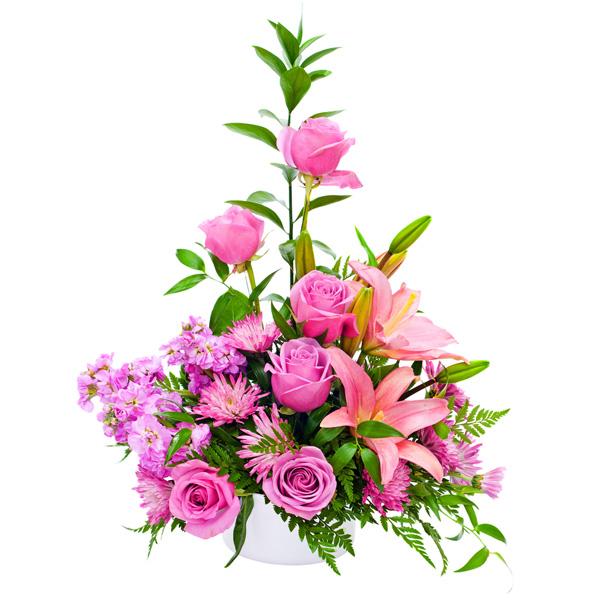 Букета 1001 купить букеты цветов оптом в москве цветов дарить